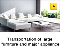 Transportation of large furniture and major appliance
